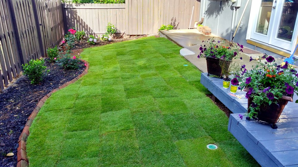 Installing A High Quality Sod Is The Best Solution To Attaining A Gorgeous  Lawn Which Requires Low Upkeep. Before Taking That Initial Step, There Are  A Few ...