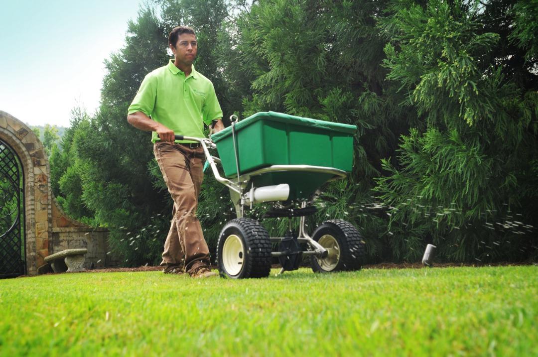 Granular fertilizer being spread by Waynes professional